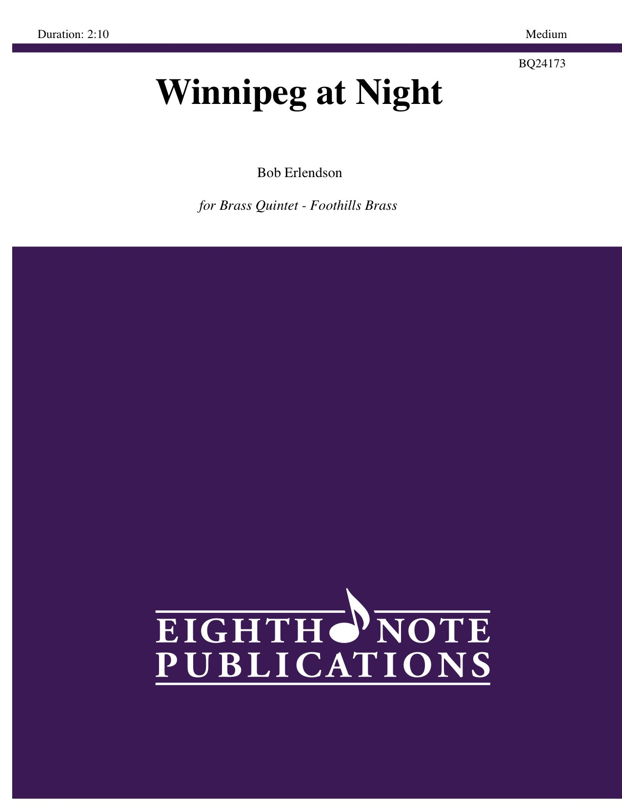 Winnipeg at Night - Bob Erlendson
